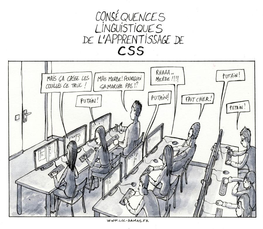 consequences_linguistiques_apprentissage_css
